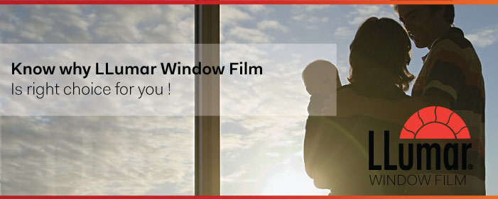 Window Film Specialist