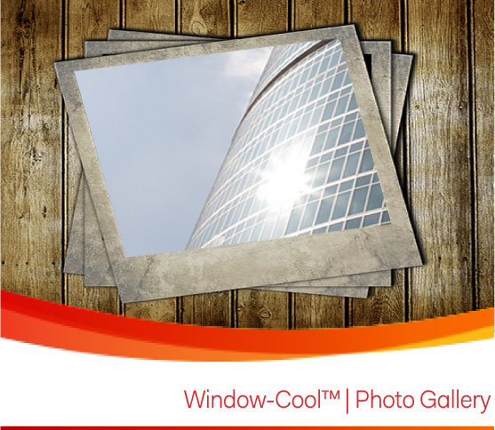 Window-Cool Window Film and Blinds Gallery